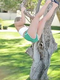 Stephanie climbs a tree in dramatize expunge park